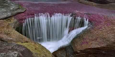 Fenomena Alam Menakjubkan Sungai Dengan Lima Warna Warni