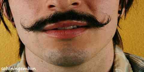 cara cepat tumbuh kumis